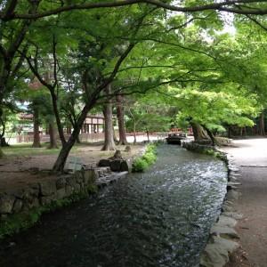naranoogawa 2